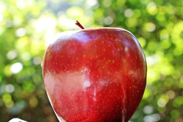 apple-1702316_960_720